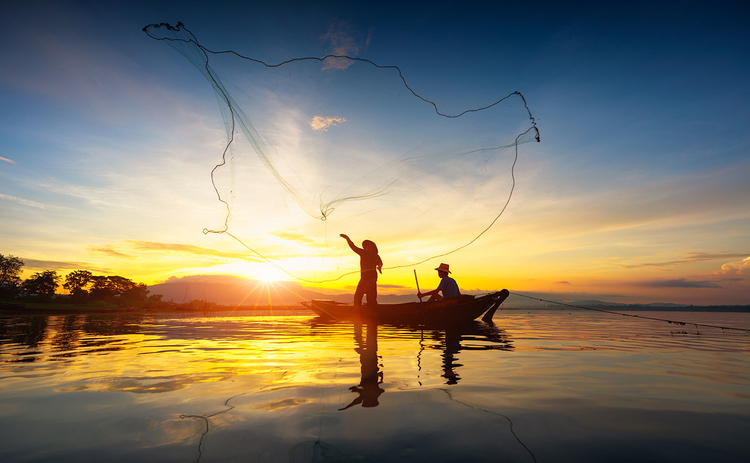 Casting a Wider Net
